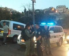 الاحتلال يعتقل 11 مواطنا من دير الأسد في الداخل المحتل