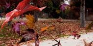 طرق الوقاية والعلاج لجفاف الجسم في فصل الخريف