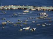 صيادو غزة يعلقون العمل في البحر حتى صباح الثلاثاء