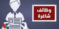 طالع رابط التسجيل|| وظائف جديدة لـ31 تخصصا في غزة