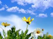 الأرصاد: ارتفاع على درجات الحرارة حتى نهاية الأسبوع