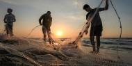 تجميد الحسابات المصرفية يفجر أزمة بين نقابة الصيادين ووزارة العمل