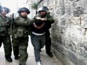 بالأسماء|| الاحتلال يعتقل مواطنين في جنين