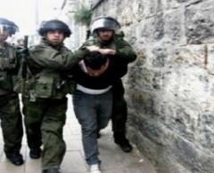 بالأسماء   الاحتلال يعتقل مواطنين في جنين