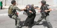 الاحتلال ينفذ 282 انتهاكا خلال أبريل المنصرم