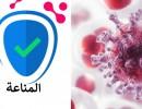 أطعمة صحية تحافظ على مناعة الجسم في رمضان