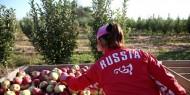روسيا تتوقع وصول الصادرات الزراعية إلى 30 مليار دولار خلال 2021