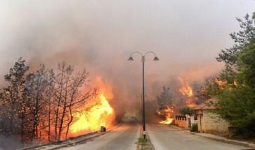 لبنان: الجيش يواصل عمليات إخماد الحرائق بمشاركة الأهالي