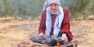 تواصل فعاليات حملة فزعة لمساعدة المزارعين في قطف الزيتون